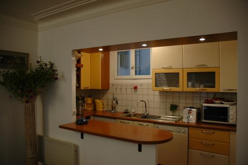 Visite de l 39 appartement bar et cuisine americaine - Cuisine americaine avec bar ...